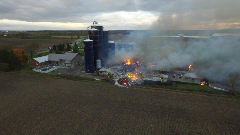 124 cows killed in farm fire near Maxville