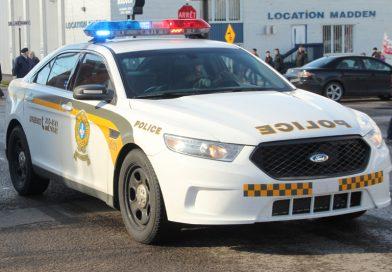 Man arrested; cannabis, firearm seized in Gore