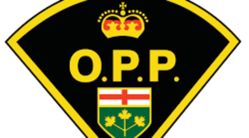 Drugs, firearm, stolen vehicle seized