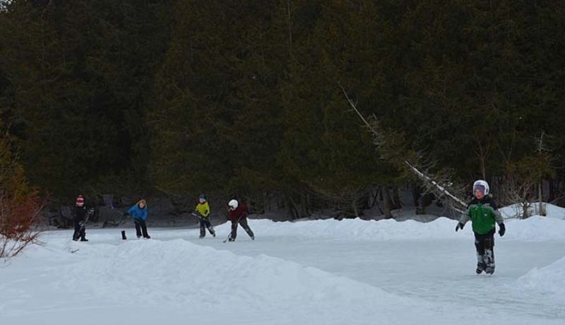 Visitors could skate on a pond in the forest (Janice Winsor photo)