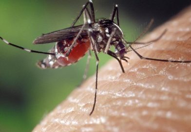 Confirmed human case of West Nile virus in our area