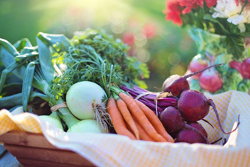 Produce Stock Photo