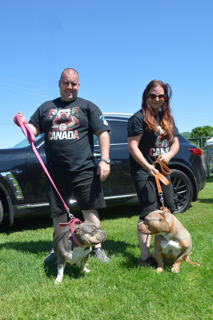 Submitted_American Bully dog show (organizers)_WEB