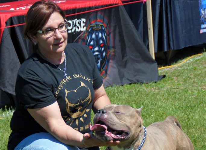Submitted_American Bully dog show_WEB_3