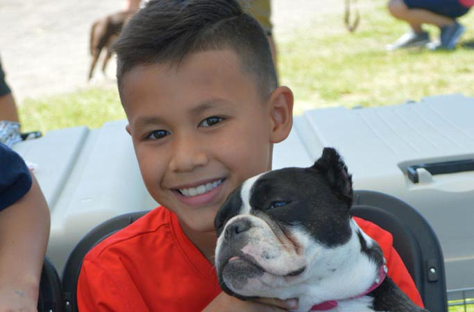Submitted_American Bully dog show_WEB_6