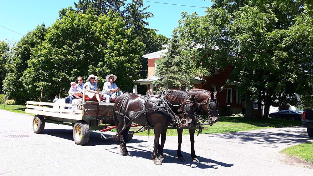 LS_July 10 2019 Horse And Buggy Parade (69