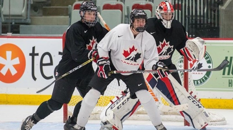 Dunvegan teen pursuing a career in professional hockey