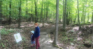 Family fun comes to Foley Mountain in Eastern Ontario through new story trail adventure