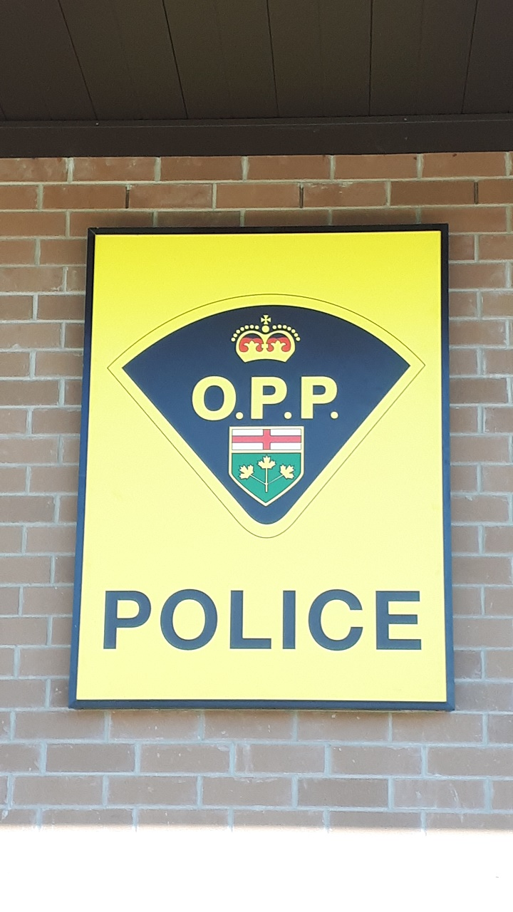 Here's what to expect at OPP COVID-19 checkpoints entering Ontario - The Review Newspaper