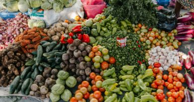 Eastern Ontario Agri-Food Network launches local food portal