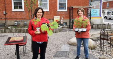 Vankleek Hill Creating Centre hosting outdoor plant sale on May 22