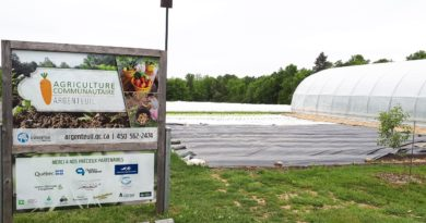 Argenteuil community agriculture project receives award