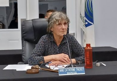 Brownsburg-Chatham Mayor Catherine Trickey will not seek re-election, multiple candidates for every position
